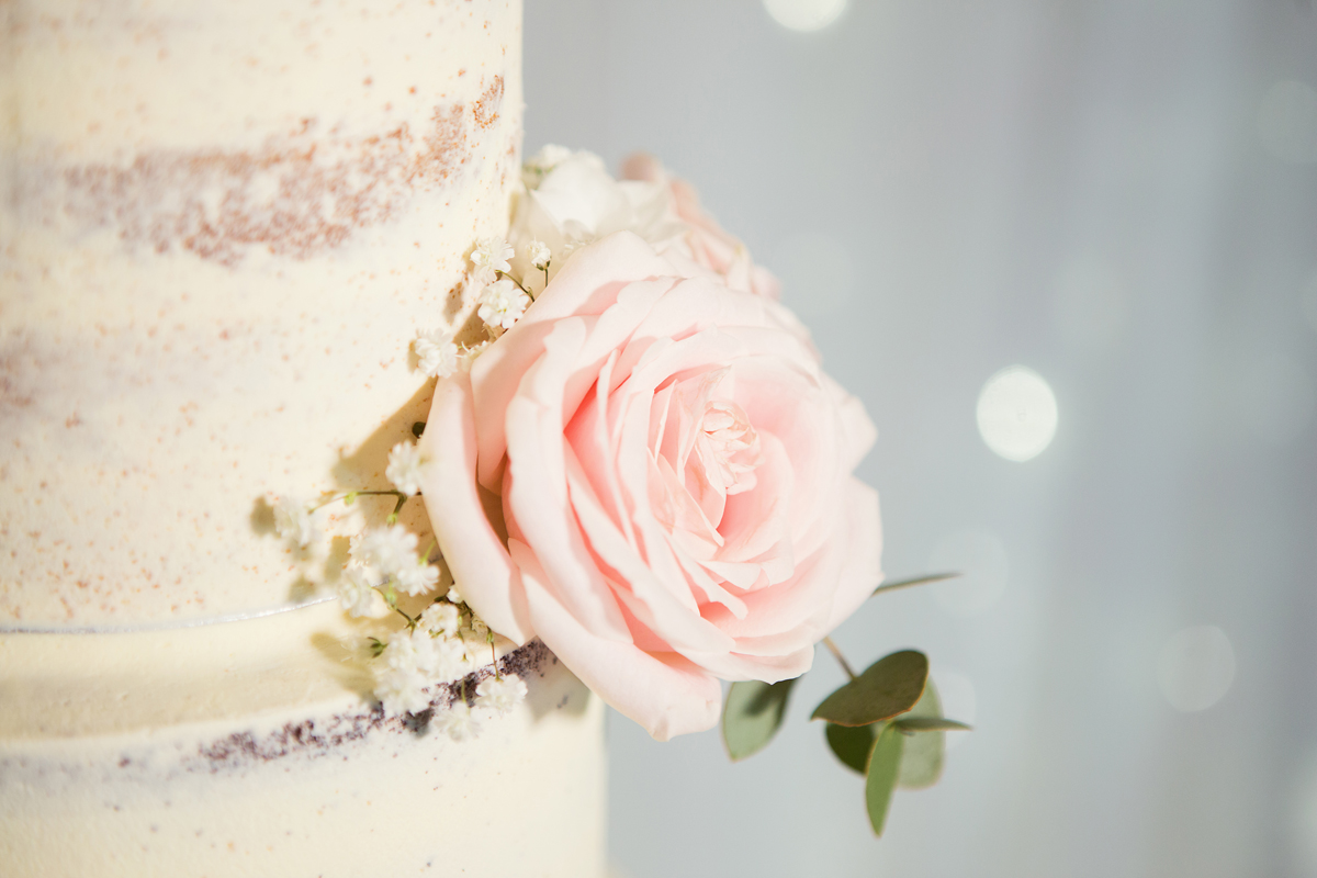 ana gely wedding photography photographer london runnymede on thames cake